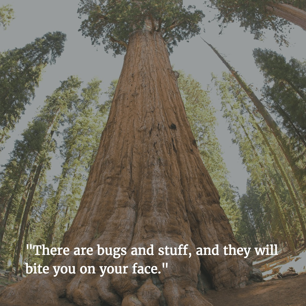 Sequoia National Park One-Star Yelp Reviews of National Parks